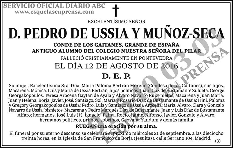 Pedro de Ussia y Muñoz-Seca